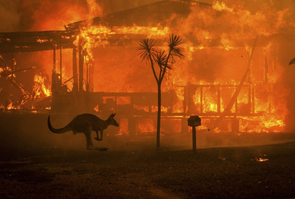 The Lasting Effects of a Continent on Fire